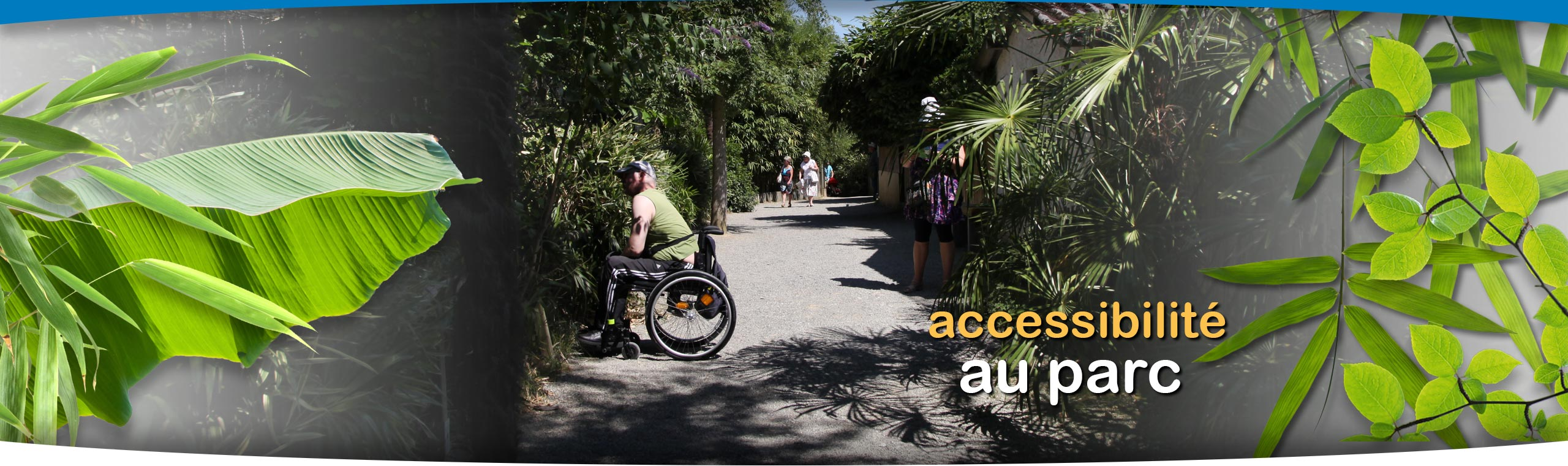 zoo-assn-accessibilte-01.jpg
